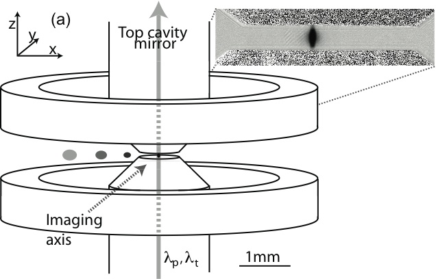 cold atoms integrated into a high-finesse cavity
