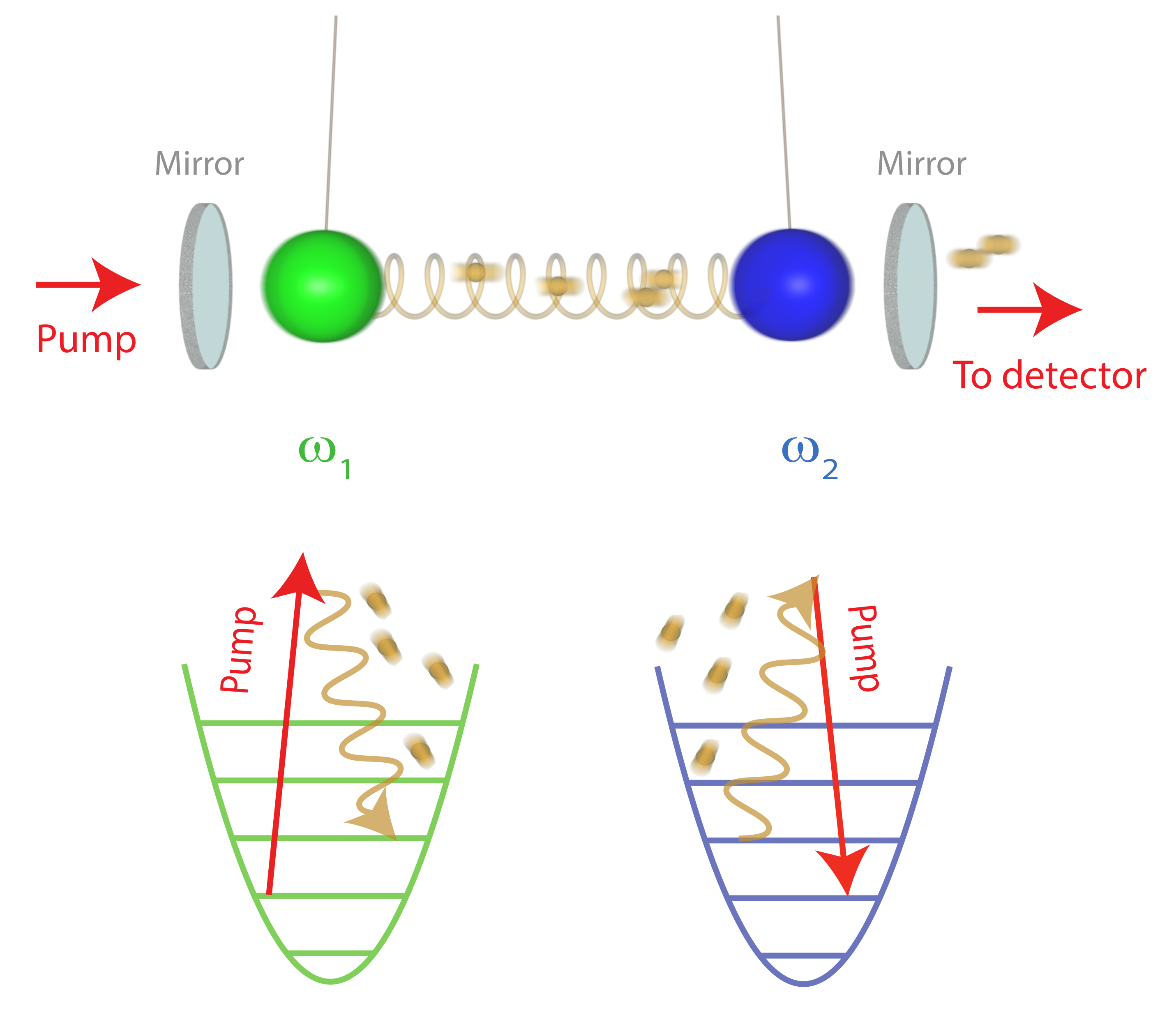 Quantum-limited coupling of mechanical oscillators